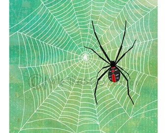 Red Back Spider Web ART PRINT Australian Arachnids