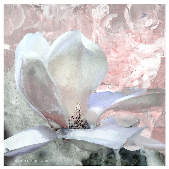 Magnolia 'Grace', magnolia print, pastel colors, limited edition print, flower art, iskra fine art, botanical print, floral art,pastel color