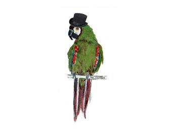 Top Hat Charlie Parrot Poster - DIY Instant Download Printable Poster Art Bird Lover Whimsical Parrot Wall Art