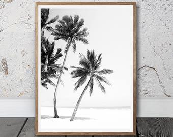 Palm Tree, Digital Download, beach decor, Home Decor, Printable Art, Printable Wall Art,  Housewarming Gift, Photography, Black And White
