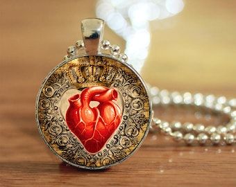 Heart Pendant, Anatomical Jewelry, Gift for Her