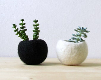 Succulent planter / Best friends forever planter / air plant holder / cactus pot / plant vase / modern decor / set of 2
