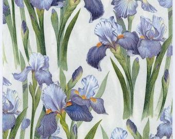 Decoupage Napkins | Blue Irises | Iris Napkins | Flower Napkins | Floral Napkins | Garden Napkins|Spring Napkins|Paper Napkins for Decoupage