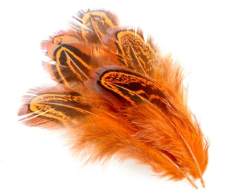 2-3 Inch Orange Pheasant Feathers. (10) Orange Ring Neck Pheasant. Orange Feathers. Orange Bird Feathers. Dyed Feather. Spotted Feathers.