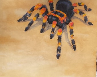 Spider art; Mexican Redknee Tarantula; original tarantula art; spider art; tarantula decor; spider decor; tarantula on canvas; spider lover