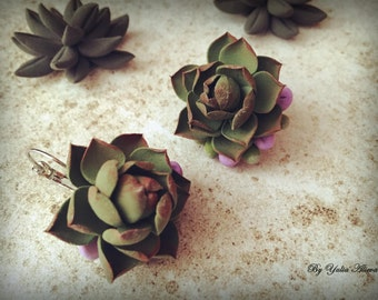 Green Succulent Earrings. Polymer clay earrings. Polymer clay jewelry. Polymer clay Succulent. Succulent plant jewelry. Succulent Jewelry
