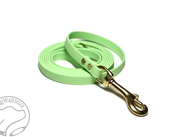"""Pastel Mint Green Small Dog Leash - 1/2"""" (12mm) Biothane - Thin Dog Lead - Choice of: 4ft, 5ft, 6 ft (1.2m, 1.5m, 1.8m) and Hardware Type"""