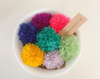 Pom Pom livre marqueur - Choisissez votre couleur!