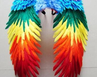 Rainbow Feather Wing Feather angle Wing