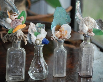Shell and Antique Bottle Assemblage