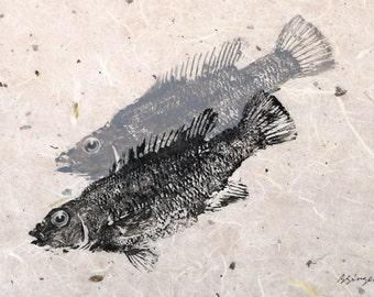 ORIGINAL Salt Water real Cunner GYOTAKU Beach House fishing Art ( Fish Rubbing ) on hand made Paper