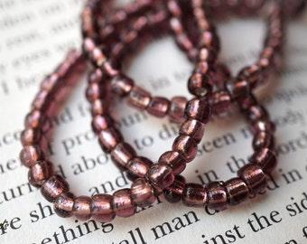 Plum Bliss, Seed Beads, Czech Beads, N26
