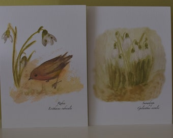 Set of 10  Snow Drop and Robin  Notecards with matching envelopes.  Five of each design.