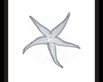 Starfish Navy Blue Beach Printable Art Print