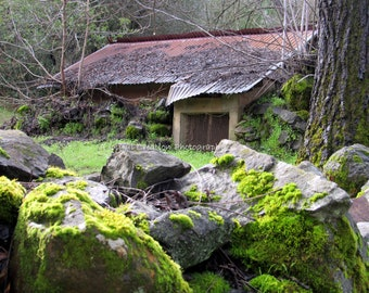 Hobbit Village - shack photo - Northern California - Mossy rocks - Mossy rocks photo - Bridgeport - Moss - Rocks - Moss photo - California
