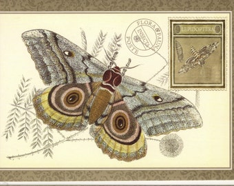Insect Vintage Postcard Saturn Moth Insect with a Sphinx Moth Stamp Posta Insecta Art Postcard PSS 2248