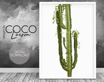 Printable cactus art, cactus poster, cactus print, succulent print, plant art printable, cactus plant, cactus photography, cactus printable