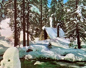 Vintage Postcard Big Bear Lake Snowfall