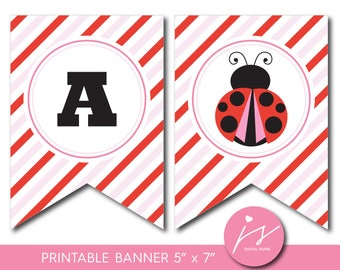 Red and pink ladybug baby shower and birthday bunting banner, Lady bug theme party, BLB4-19
