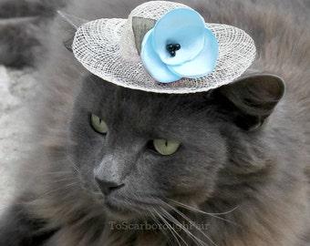 Printemps chat chapeau - chapeau Elsa pour animal de compagnie - Royaume d'hiver - fleur bleu aigue-marine - Pâques Bonnet