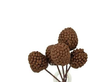 Tiny Pinecones Gumpaste Sugar Paste Cake Topper for Rustic Woodland Weddings, birthdays, bridal showers