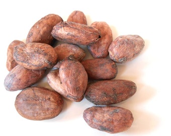 RAW CACAO BEANS, Organic - Dark Cocoa - Delicious, Wholesome, Full of Dark Sweetness