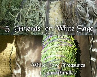 "Cedar & White Sage Smudge Bundle ~ 5 Friends Blend ~ Smudge Stick White Sage Sweet Grass Copal Desert Sage Native Sacred Smoke 7"" Fat"