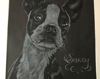 Example, Custom sketch portrait, Cutsom color pencil pet drawing from photo, Custom pet portait