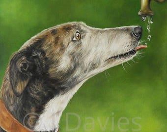 Greyhound Art, Greyhound Art print, Sighthound Art print, Greyhound Painting, Greyhound portrait, pet portrait, greyhound portrait