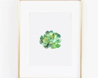 Watercolor Print - Green Succulent Floral Digital Download Art Print