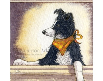 Border Collie dog 5x7 8x10 11x14 art print sheepdog poser in window wearing neck scarf cool dude from a Susan Alison watercolor painting