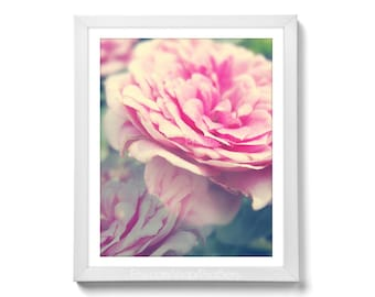 Printable art Rose photography Printable photography Flower photo soft pink rose photo Dreamy photography pink 11x14 print Flower print
