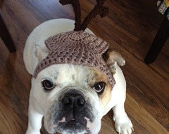 Dog hat - REINDEER -L/XL-41-60 lbs- Christmas pet hat - Humorous -See sizes