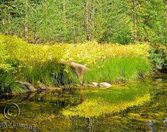 Yosemite National Park, Landscape Photography, Yosemite, Nature Photography,  US National Park,  California, Hiking Yosemite,