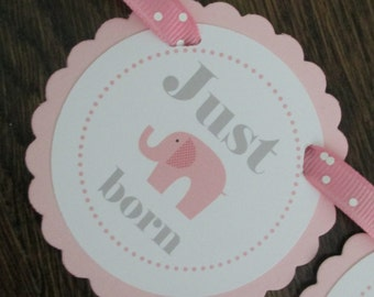 Little Peanut GIRL: Just Born/0-12 mos Picture Banner. First Birthday Banner. Light Pink. Elephant. Baby Girl. Pink. Sweet.