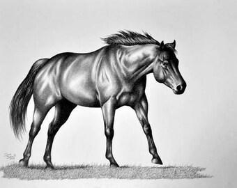 Running horse original graphite drawing