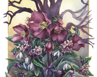 Fine Art Print of Original Watercolor Painting - Woodland II