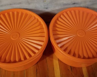 Vintage MINT condition 2qt Tupperware containers.
