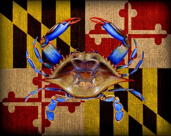 Maryland Flag & Crab