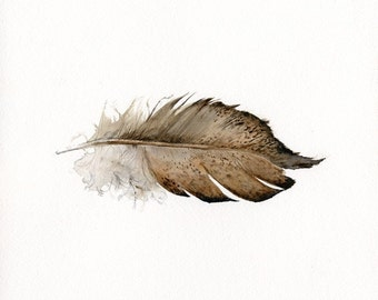 art de la plume - or laçage Wyandotte plume - imprimer