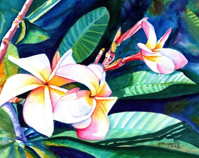Blooming Plumeria,  5x7 art prints, Kauai giclee, Hawaiian flower art, frangipani, Hawaii interior decor, Plumerias, Kauai art,