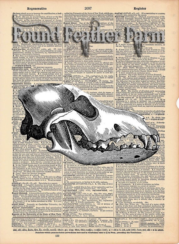 """Vintage Antique Dictionary Page with Antique Print """"Wolf Skull"""""""