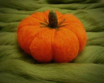 Needle felted Pumpkin.