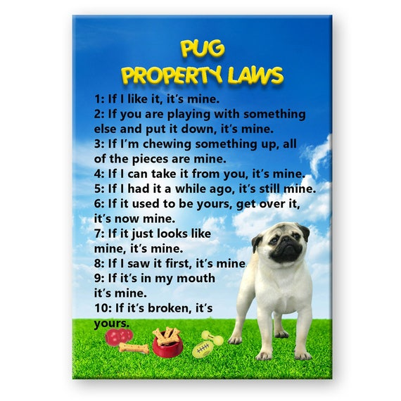 Pug Property Laws Fridge Magnet No 1 Fawn