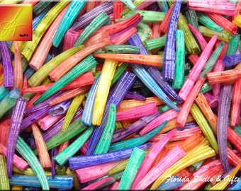 "1 lb (about 1500) Dyed Tusk Shells (dentalium) 3/4"" - 1 1/4"" Seashells for Crafts and Beach Cottage Decor"