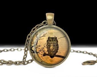 Moon and Owl Necklace Owl Jewelry Necklace Wearable Art Pendant Charm Owl Photo Pendant
