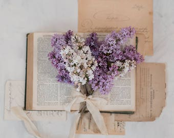 spring lilacs photo-flower photography - flower photo- cottage garden photography  Original fine art photography prints- FREE Shipping