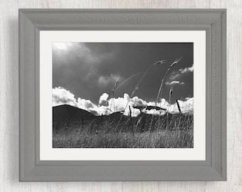 Utah Mountain Scenery - Nature Photography from Utah