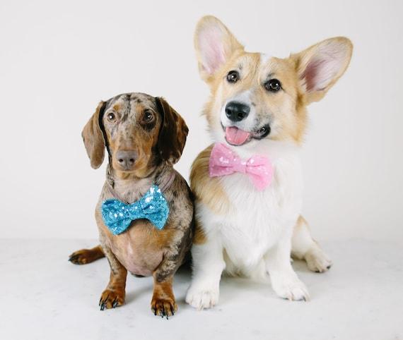 Neck Bowtie for Dog   Dog Bow Headband    Dog Neck Tie    Pet Bow Tie    Dog Clothes
