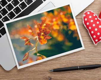 Orange Orchid Photo Notecard, Orchid Stationary, Flower Card, Blank Greeting Card, Any Occasion, Gifts for her, Gifts under 20